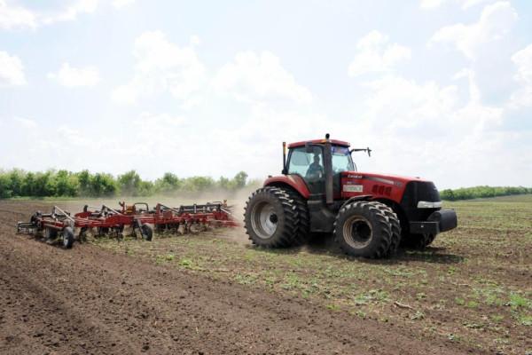 «НІБУЛОН» завершує укладання угод на постачання насіння під урожай 2018 року
