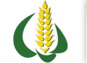 Представники компанії «НІБУЛОН» взяли участь в міжнародній конференції «Зерновий форум-2012: виробництво, переробка, трейдинг»