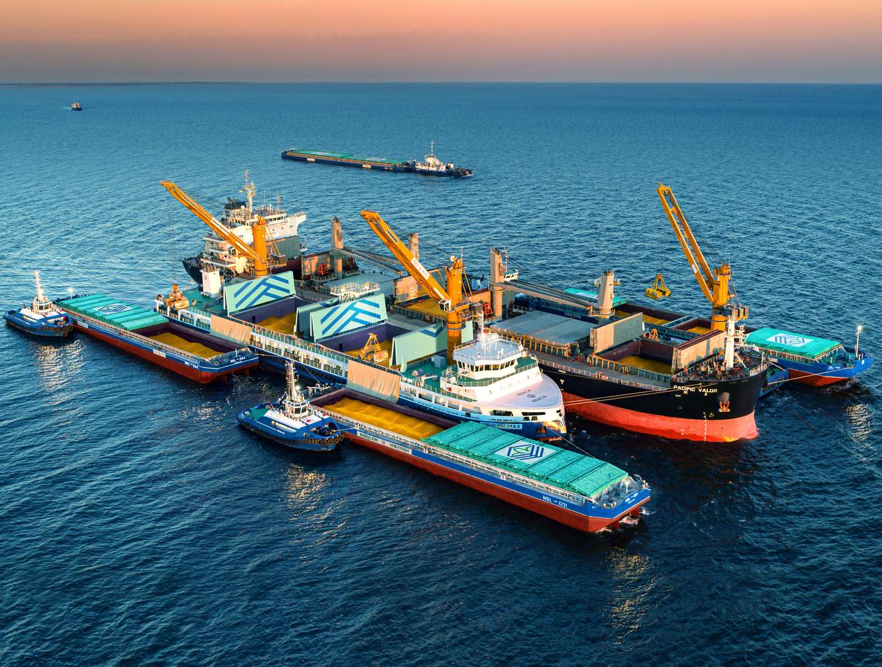 Флот компанії НІБУЛОН: зовнішній рейд морського порту Миколаїв