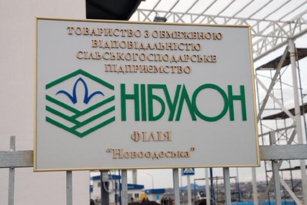 Стан будівництва елеватора філії <b>«Новоодеська»</b>, 09.03.2011 (фоторепортаж)