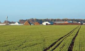 Земельна реформа — quo vadis? (Петро Порошенко, «Дзеркало тижня. Україна»)