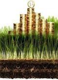 В Раде со второй попытки протолкнули создание земельного банка. В обход земельного закона