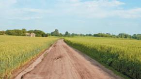 Рада в першому читанні ухвалила мораторій на продаж земель