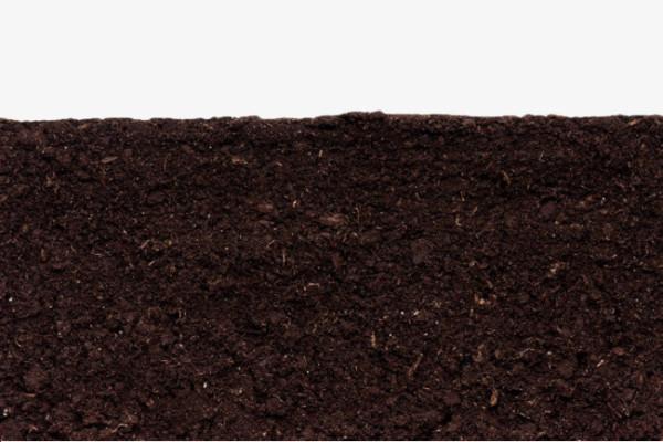 Компанія «НІБУЛОН» виконувала роботи з благоустрою території,  використовуючи екологічно безпечний ґрунт