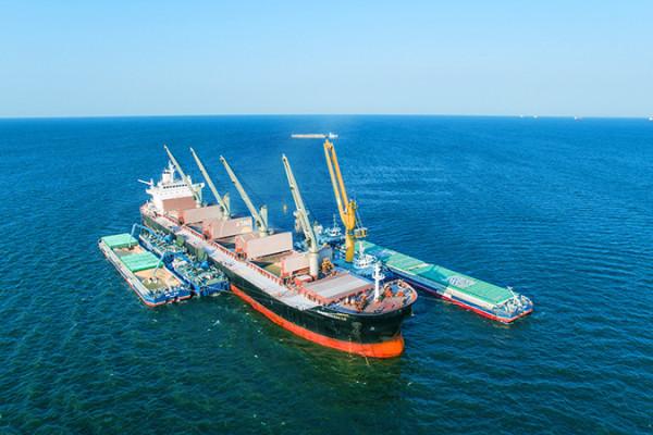 Рекорди 2018: у першому півріччі 2018/19 МР «НІБУЛОН» продемонстрував найбільший за всі роки обсяг експорту
