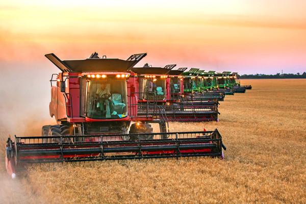 Збиральна кампанія ранніх зернових культур наближається до завершення