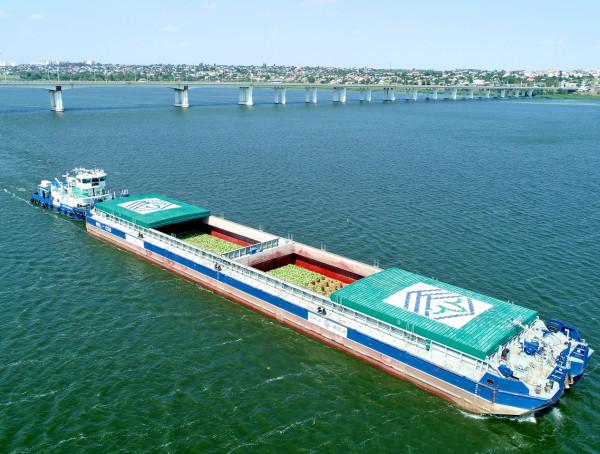 Уже наступного тижня до Києва прибуде судно зі свіжими херсонськими кавунами
