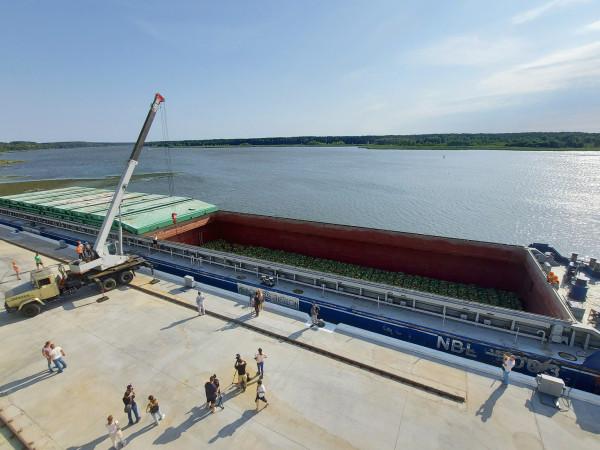Флот «НІБУЛОНа» зі смугастим вантажем прибув до філії «Переяславська»