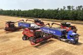 «НІБУЛОН» отримав максимальний валовий збір за всі роки ведення виробництва – 340,3 тисяч тонн